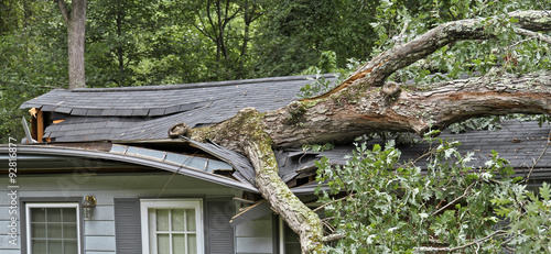 Poster de jardin Tempete Storm Fells Tree Destroying a House Roof