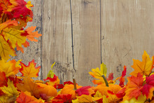 Autumn Leaves And Pumpkins Background