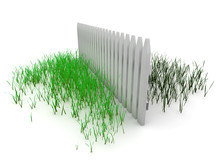 3d: Grass Is Always Greener On The Other Side Of The Fence
