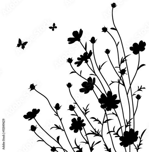 Letni ogród. Sylwetka kwiatów