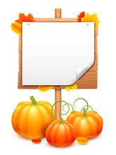 Bunch Of Pumpkins And Signboard