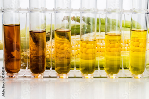 Corn generated ethanol biofuel with test tubes on white background Wallpaper Mural