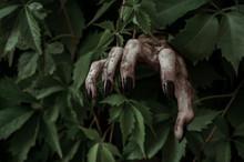 Horror And Halloween Theme: Te...