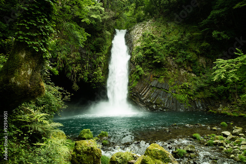 Lush green waterfall in Minami Izu, a day trip away from Tokyo for some nature a Canvas Print
