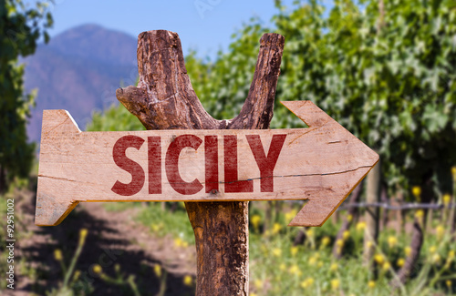 Fotografie, Obraz  Sicily wooden sign with winery background