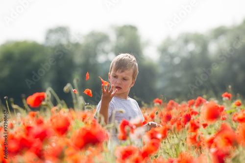 Portrait of a boy playing in a poppy field