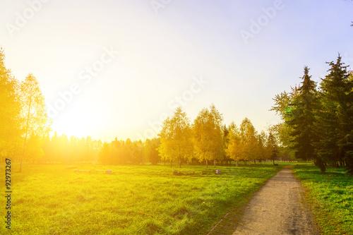 Cadres-photo bureau Miel Autumn Park with Pathway