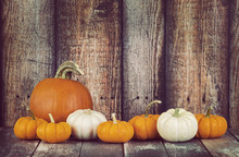 Pie Pumpkin And Mini Pumpkins In A Row Against Rustic Wooden Background