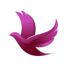 Beautiful Graceful Dove Fly - ...