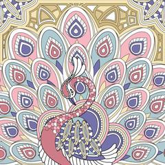 Fototapeta elegant peacock