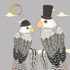 Fototapeta elegant parrots