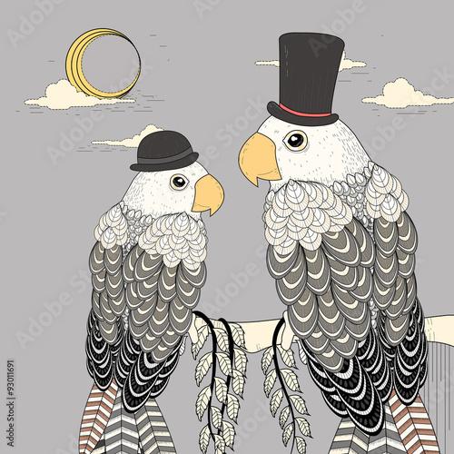 elegant parrots - 93011691