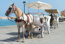 Horses And Vintage Carriages On The Pier Near The Sea.