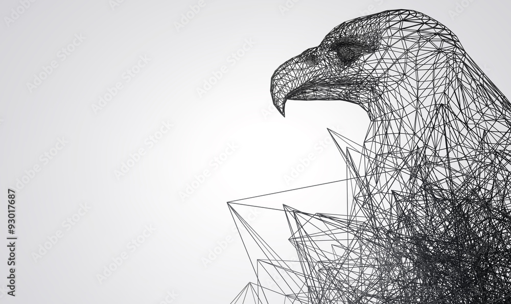 eagle stylized low poly wire construction concept concepts connection