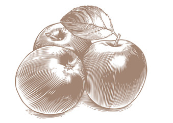 Naklejka Apples
