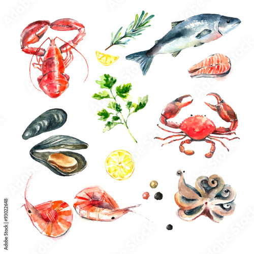 Photo  Set of seafood watercolor.