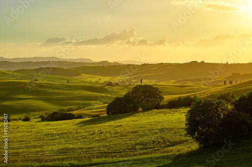 Poster Miel Tuscany hills