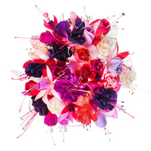 Bouquet Of Colorful Fuchsia Flowers Is Isolated On White Backgro