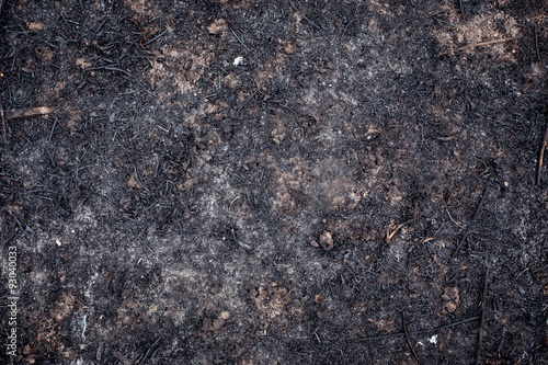 Fotografie, Obraz  Ashes background