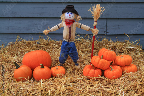 Fotografie, Obraz  Pumpkins, Thanksgiving and Scarecrow