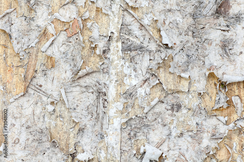 stary-papier-rozdarty-na-scianie-drewna