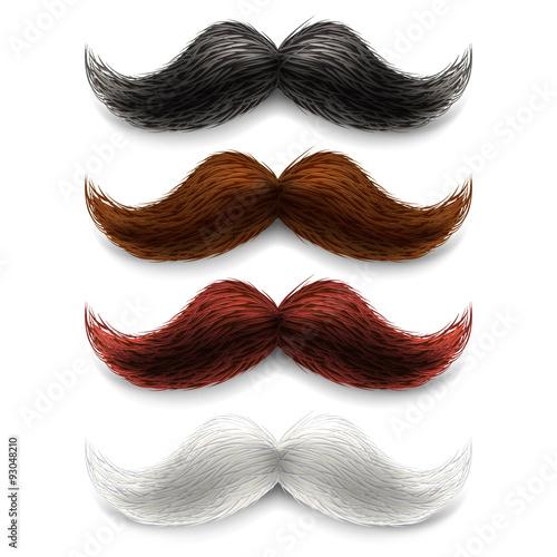 Fototapeta Zestaw kolorów fałszywych wąsów