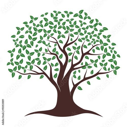 oak tree vector buy this stock vector and explore similar vectors rh stock adobe com oak tree victorian boots oak tree vector black