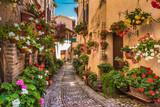 Kwiatowa ulica w środkowych Włoszech, w małym średniowiecznym Umbrii - 93056400