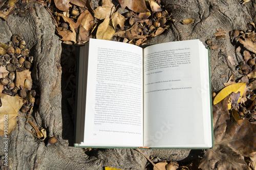 Fotografie, Obraz  Libro abierto en otoño