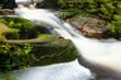 Small stream in jungle