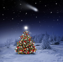 FototapetaGeschmückter Weihnachtsbaum im Winterwald