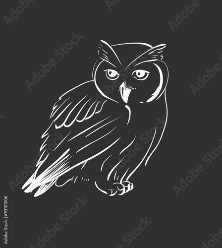 In de dag Uilen cartoon Owl hand drawn, black and white