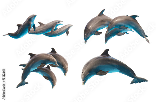 Stickers pour portes Dauphin jumping dolphins on white