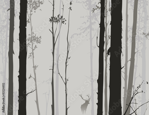 Fototapeta silhouette of the forest with deer 2