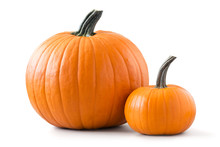 Two Pumpkins Isolated On White...