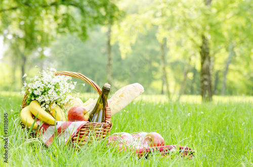 In de dag Picknick Picnic basket