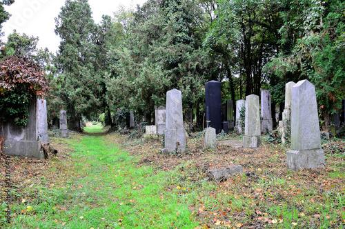 Keuken foto achterwand Begraafplaats Grabsteine am Friedhof im Herbst