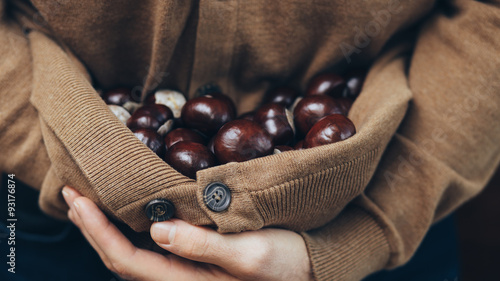 Armful of chestnuts. Vintage style.
