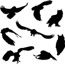 Silhouettes Of Birds. Owl, Eag...