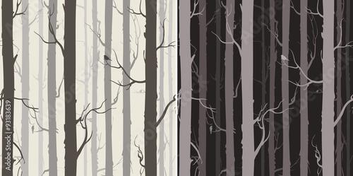 fototapeta na szkło seamless texture with trees
