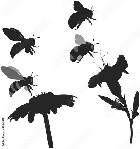Carta da parati silhouettes bee and bumblebee