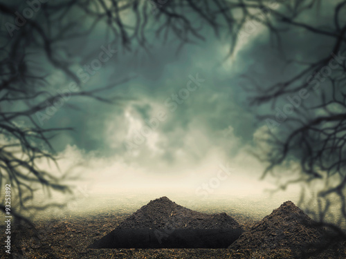 Grave in the forest Wallpaper Mural