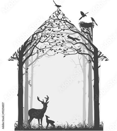 natura-naszego-domu