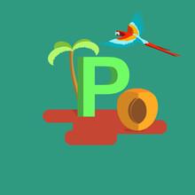 The Letter Of The Alphabet - P. Parrot, Palm, Peach
