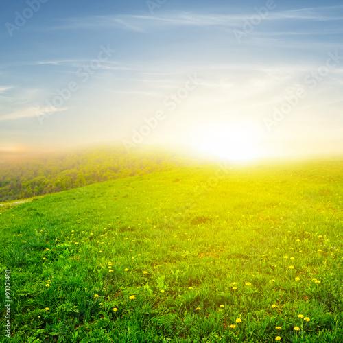 Fotobehang Cultuur green fields at the sunset