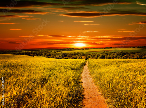 Fototapeta zachód słońca na wsi