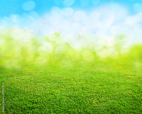 Door stickers Spring grass background