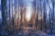 Blurred Autumn Landscape Park Fog