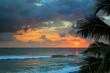 beautiful sea sunset and palm leaves