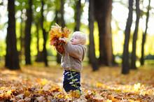 Toddler Having Fun In Autumn